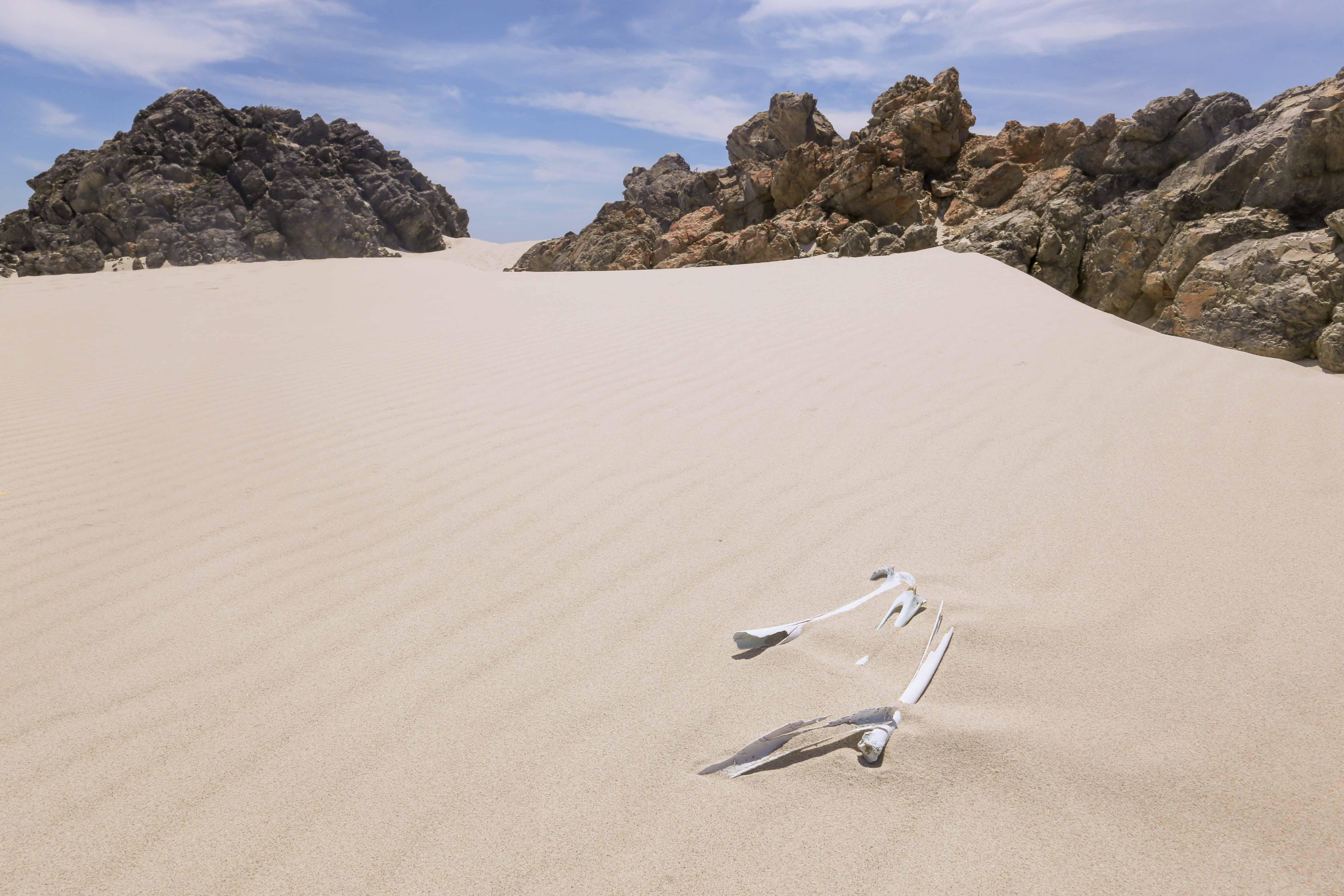 Un paisaje de arena y piedres