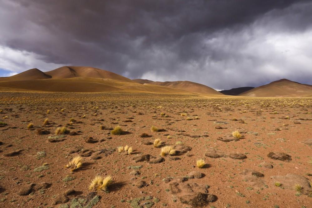 Desolate Puna landscape, NW Argentina.